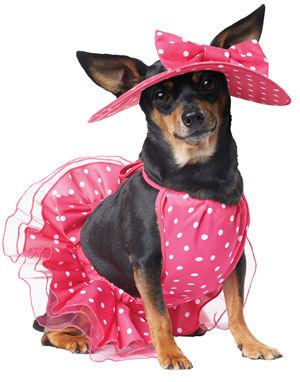California Costumes 通販ショップ LCCPET20142